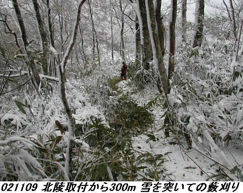 021109_toukinhokuryoyabukari_1_01
