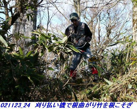 021123_24_toukinhokuryoyabukari_2_01