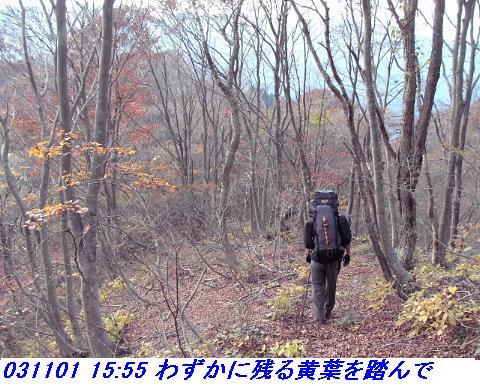 031101_03_makino_33kenyama005