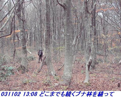 031101_03_makino_33kenyama010