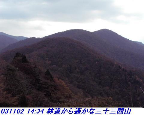 031101_03_makino_33kenyama014