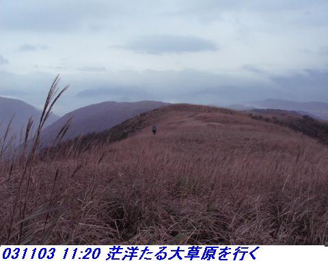 031101_03_makino_33kenyama020