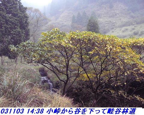031101_03_makino_33kenyama022