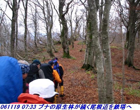 031118_19_nosakadake_020