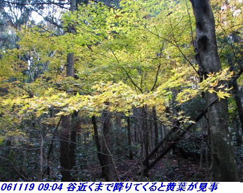 031118_19_nosakadake_022