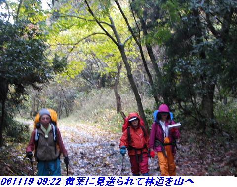 031118_19_nosakadake_025