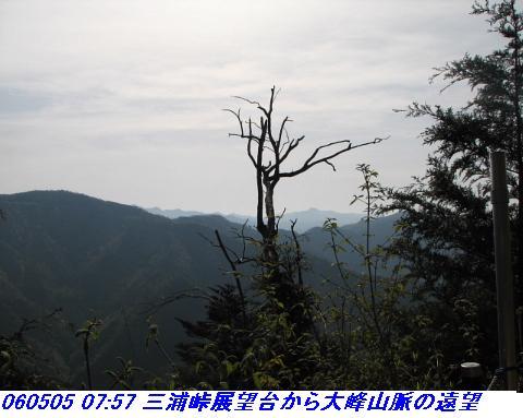 060503_05_koheji_065