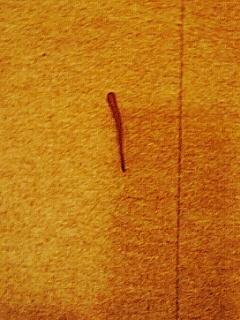 060520-2 蛭と焼酎