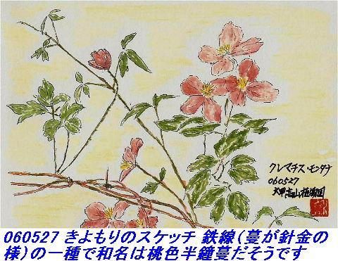 060527_kouzansyokubutuen_019