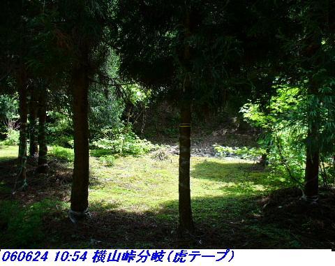 060624_25_kankeikaishitami_008