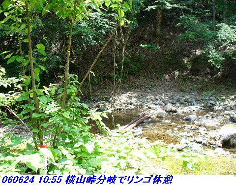 060624_25_kankeikaishitami_009