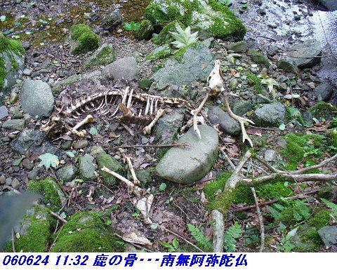 060624_25_kankeikaishitami_012_1