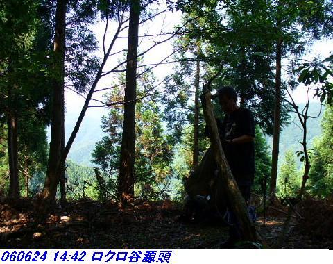 060624_25_kankeikaishitami_025_1
