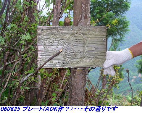 060624_25_kankeikaishitami_037