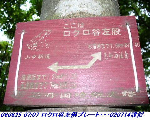 060624_25_kankeikaishitami_038