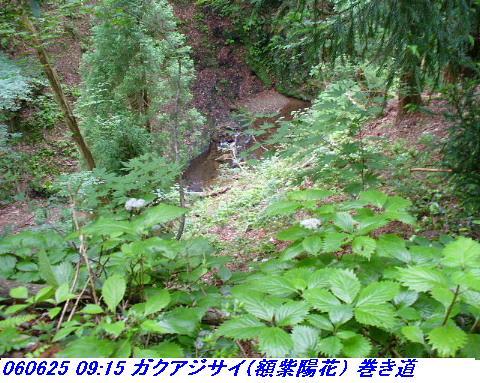 060624_25_kankeikaishitami_052