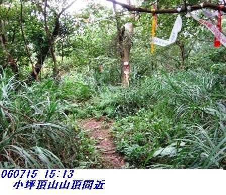 060715_ymn5_kotubotyosantyo_madika