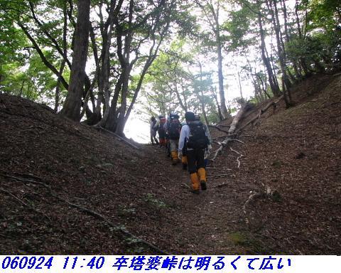 060924_haisonhatyo_010