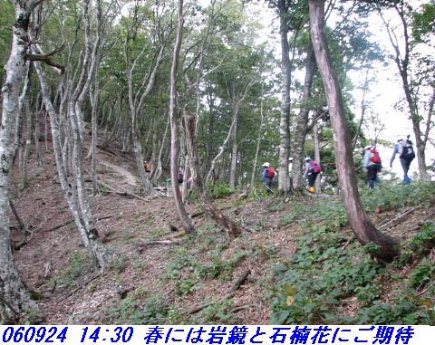 060924_haisonhatyo_022