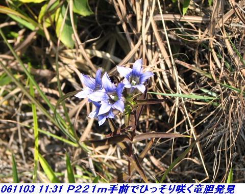 061103_okesueyama_017