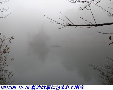061209_rokkosanjyo_ikemeguri_p1_010