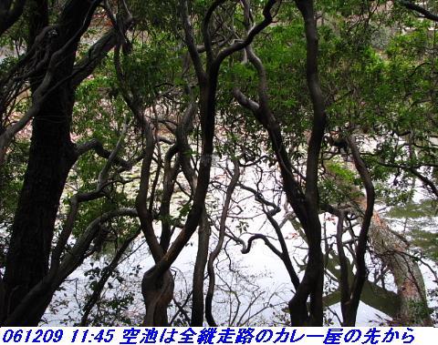 061209_rokkosanjyo_ikemeguri_p1_016