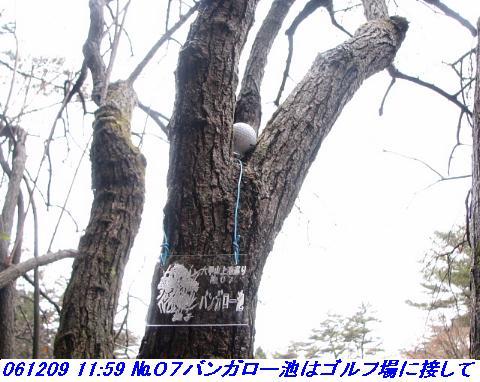 061209_rokkosanjyo_ikemeguri_p1_017