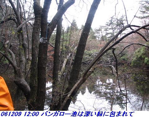 061209_rokkosanjyo_ikemeguri_p1_018