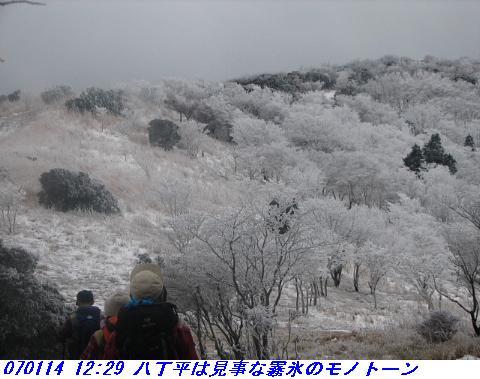 070114_miuneyama_shitami_012