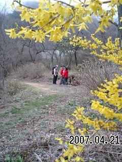 070421 清水谷上池と長池