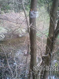 070421-3 空池、アマ池、西松池