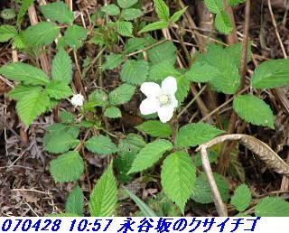 070428_30_jyakutanrr2_nagatanisaka_yokoo_1