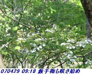 070428_30_jyakutanrr2_nagatanisaka_yokoo_18