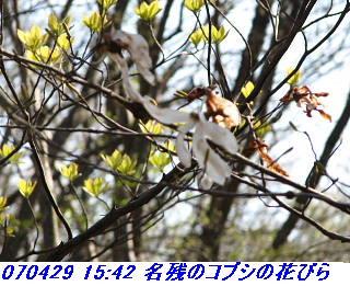 070428_30_jyakutanrr2_nagatanisaka_yokoo_27