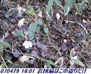 070428_30_jyakutanrr2_nagatanisaka_yokoo_28