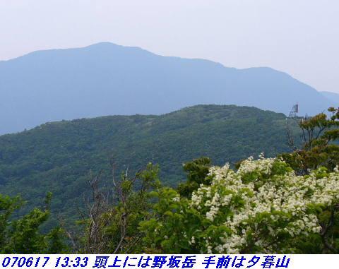 070617_iwakomoriyama_010