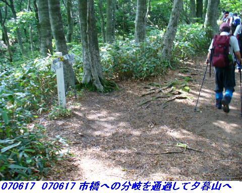 070617_iwakomoriyama_021