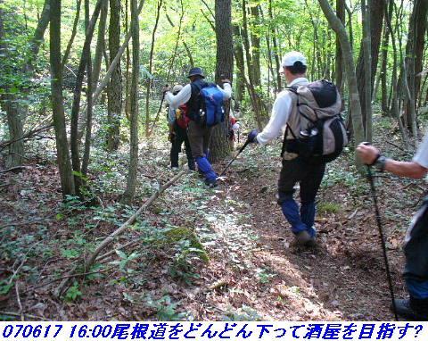 070617_iwakomoriyama_024