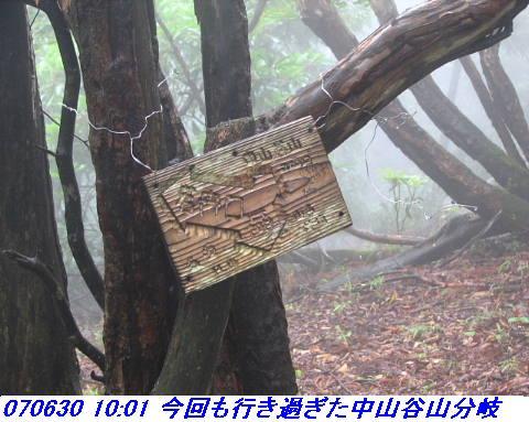 070630_0701_gonami_kutuki004