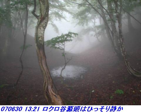 070630_0701_gonami_kutuki009