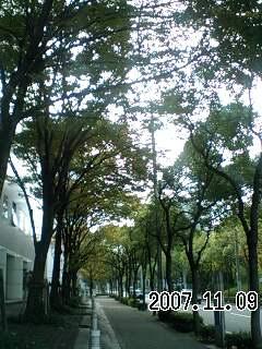 071109-2 季節のある町
