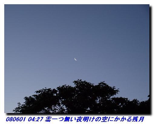 080531_0601_sanjyodake_akasakaya_14