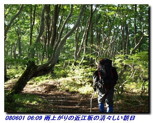 080531_0601_sanjyodake_akasakaya_17