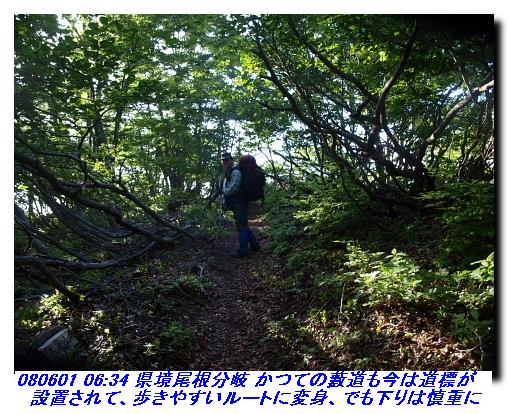 080531_0601_sanjyodake_akasakaya_18