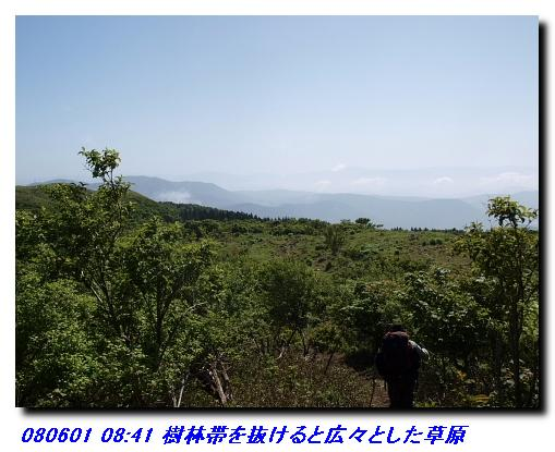080531_0601_sanjyodake_akasakaya_22