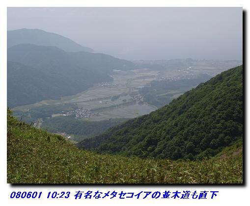 080531_0601_sanjyodake_akasakaya_27