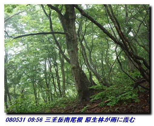 080531_0601_sanjyodake_akasakayam_3