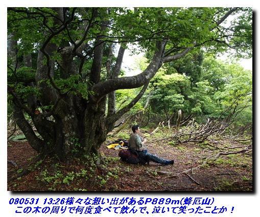 080531_0601_sanjyodake_akasakayam_6