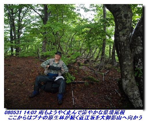 080531_0601_sanjyodake_akasakayam_8