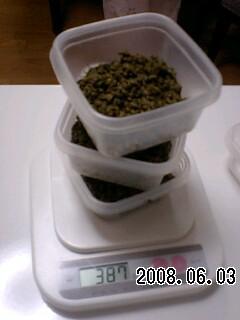 080603-3 山椒の味噌漬け
